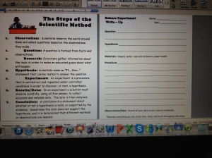 Forms for diaper experiment